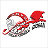 logo du club Association Sportive Volley Gigean