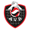 logo du club  Association Volley Brive