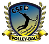 logo du club Club Sportif de Fontaine-Lès-Dijon -  Volley-Ball