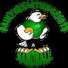 logo du club Saint Sébastien Sports Handball