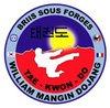 logo du club Taekwondo Briis sous Forges