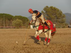 SUNNY SUMMER WEATHER IN ROYAL CASTEL POLO CLUB