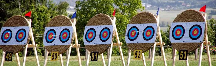 les archers du Vouglaisien : site officiel du club de tir à l'arc de VOUILLE - clubeo