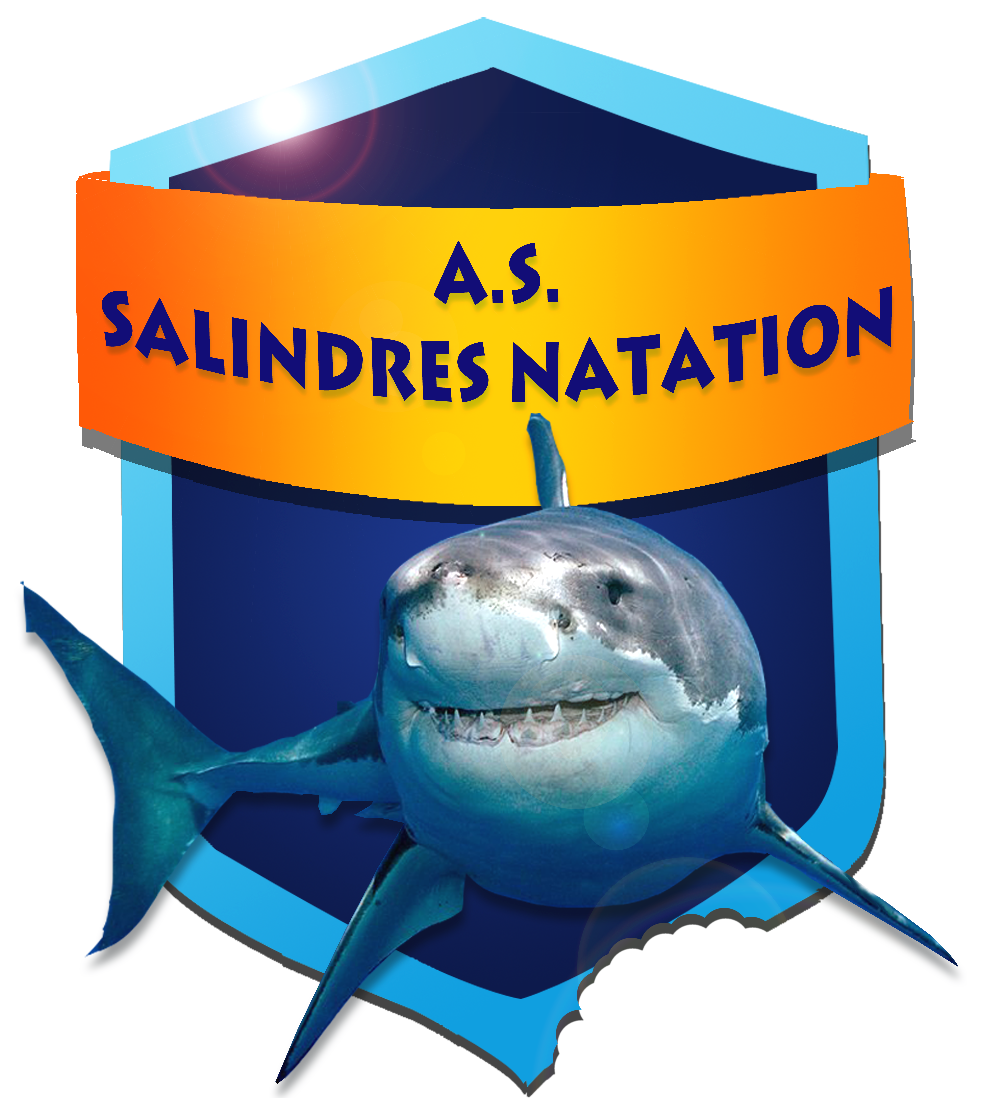 Palmar s challenge sprint de salindres club natation for Piscine salindres