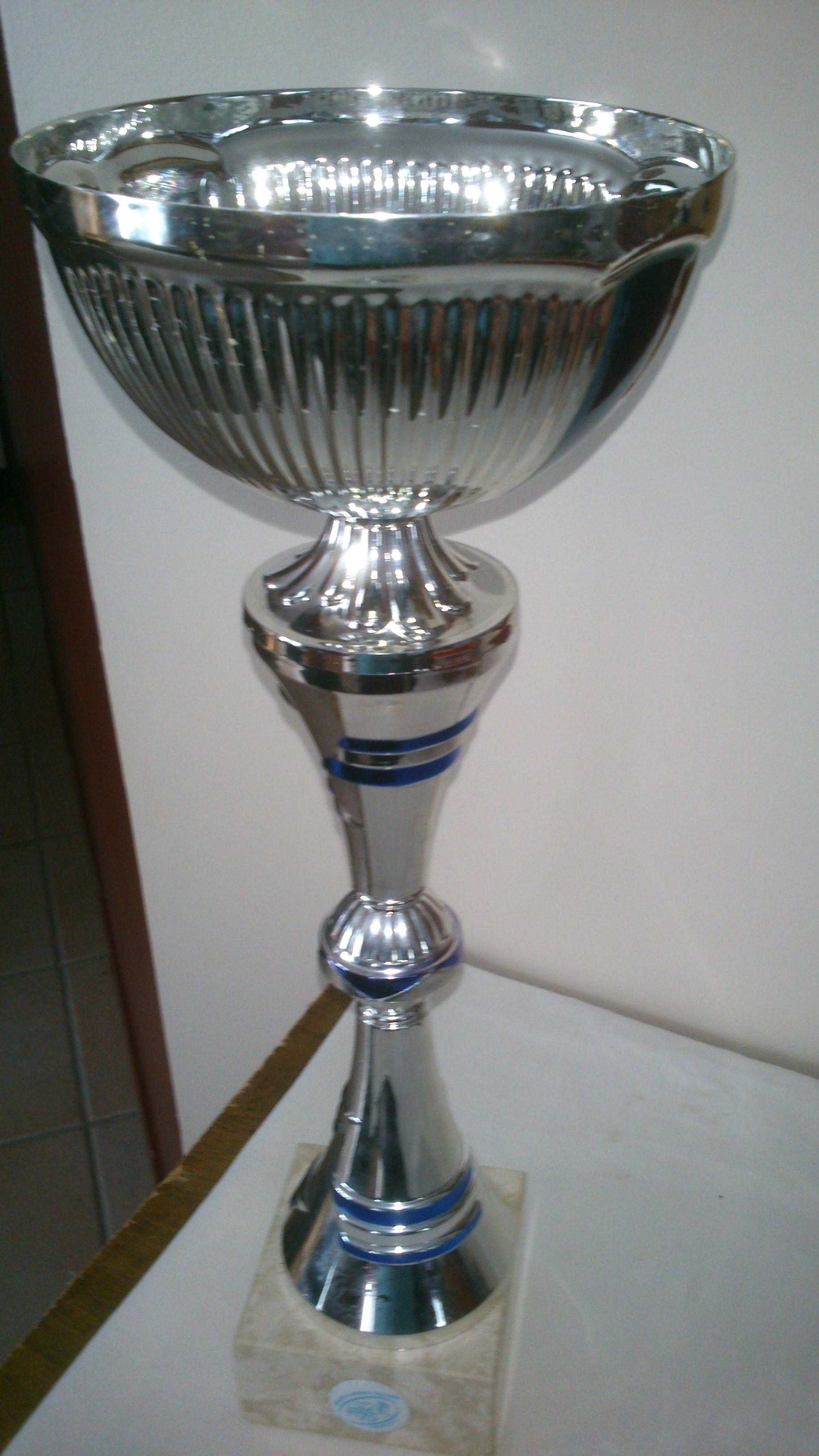 Coupe Saujon 2014