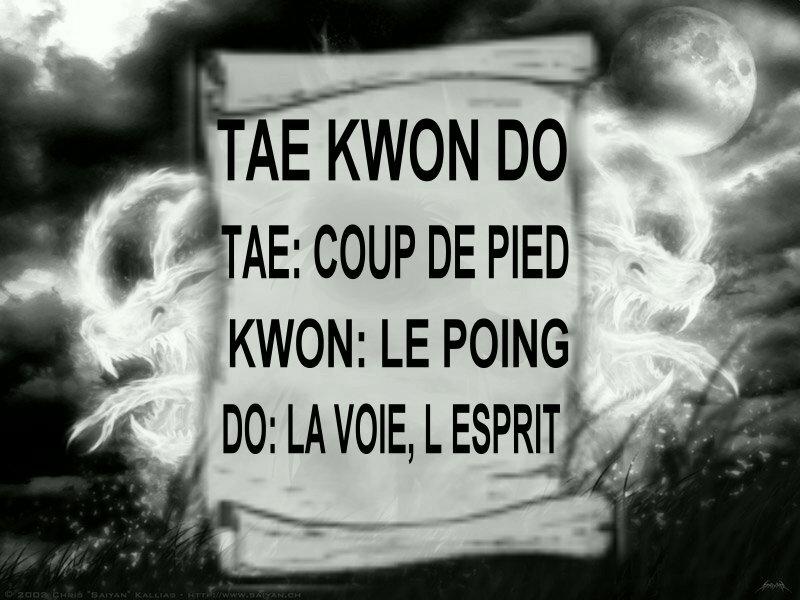 definition du taekwon do