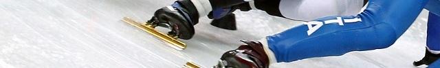 Club de Glace de l'Amicale Laïque d'Echirolles : site officiel du club de sports de glace de ECHIROLLES - clubeo