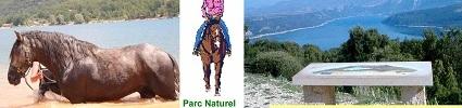 FERME EQUESTRE DU PUITS DE RIQUIER : site officiel du club d'equitation de REGUSSE - clubeo