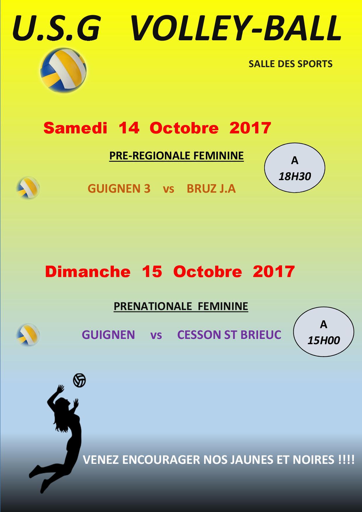 AFFICHE VOLLEY du 14-15 Octobre 2017.jpg