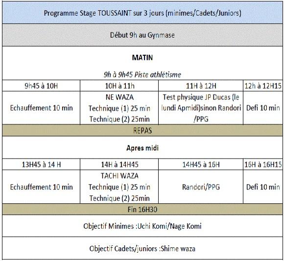 STAGE TOUSSAINT (Élancourt Complexe de l'Europe) Minimes/Cadets/Juniors - 20-21-22 octobre 2014