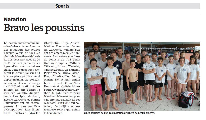 Poussins 4
