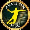logo du club Avallon Handball Club