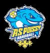 logo du club Association Sportive Poissy Handball