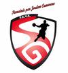 logo du club F.E.V.E.