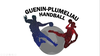 logo du club Guénin Pluméliau HB