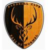 logo du club Handball Club Pays de Mormal