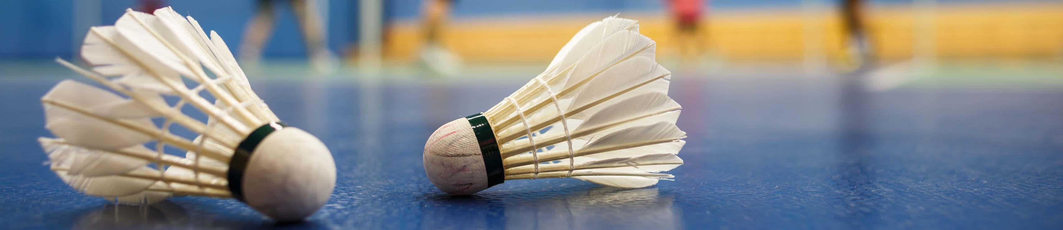 Dieppe Badminton Club : site officiel du club de badminton de LA CRIQUE - clubeo