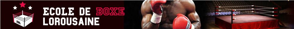 École de Boxe Lorousaine : site officiel du club de boxe de LE LOROUX BOTTEREAU - clubeo