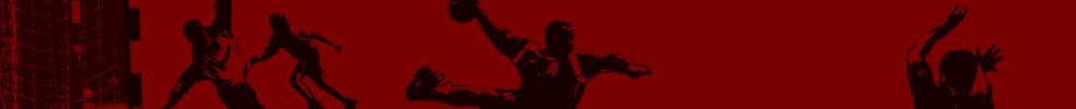 Hand Ball Club Douarnenez : site officiel du club de handball de douarnenez - clubeo