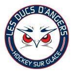 Angers Les Ducs