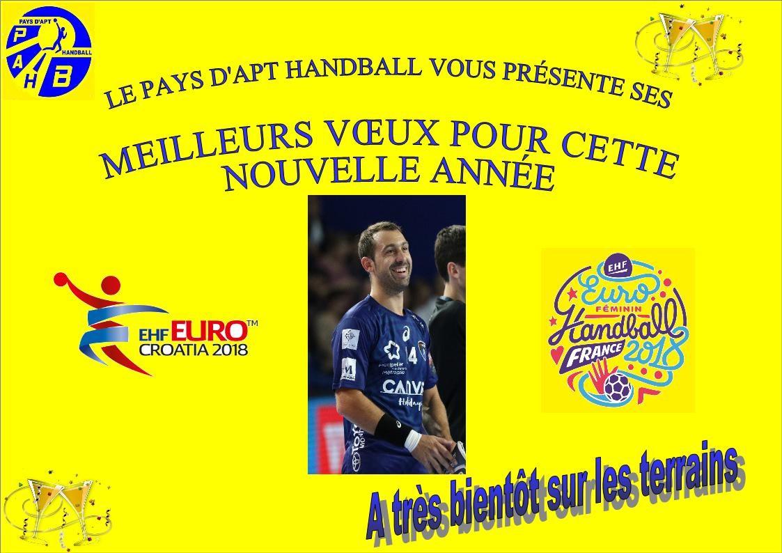 Voeux 2018 Pays Apt Handball