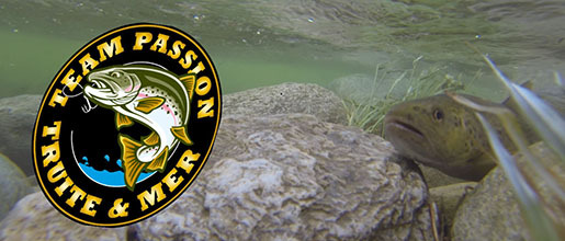 TEAM PASSION TRUITE & MER : site officiel du club de pêche de MONTBERON - clubeo